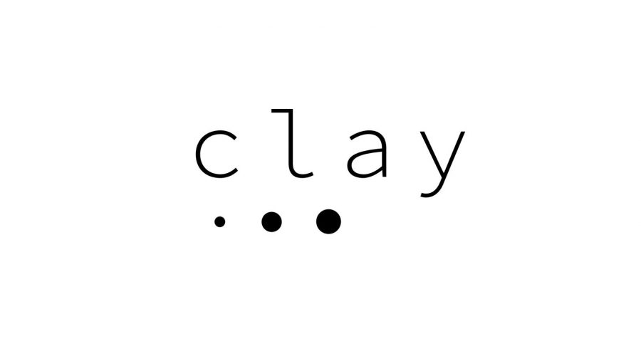Logo Clay Dinsinfect